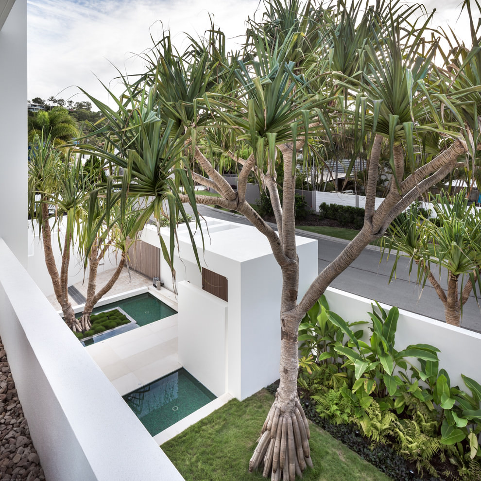 White Box by Tim Ditchfield Architects