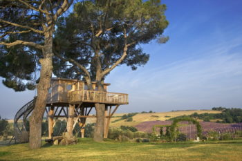 Italian Treehouse by Claudia Pelizzari Interior Design