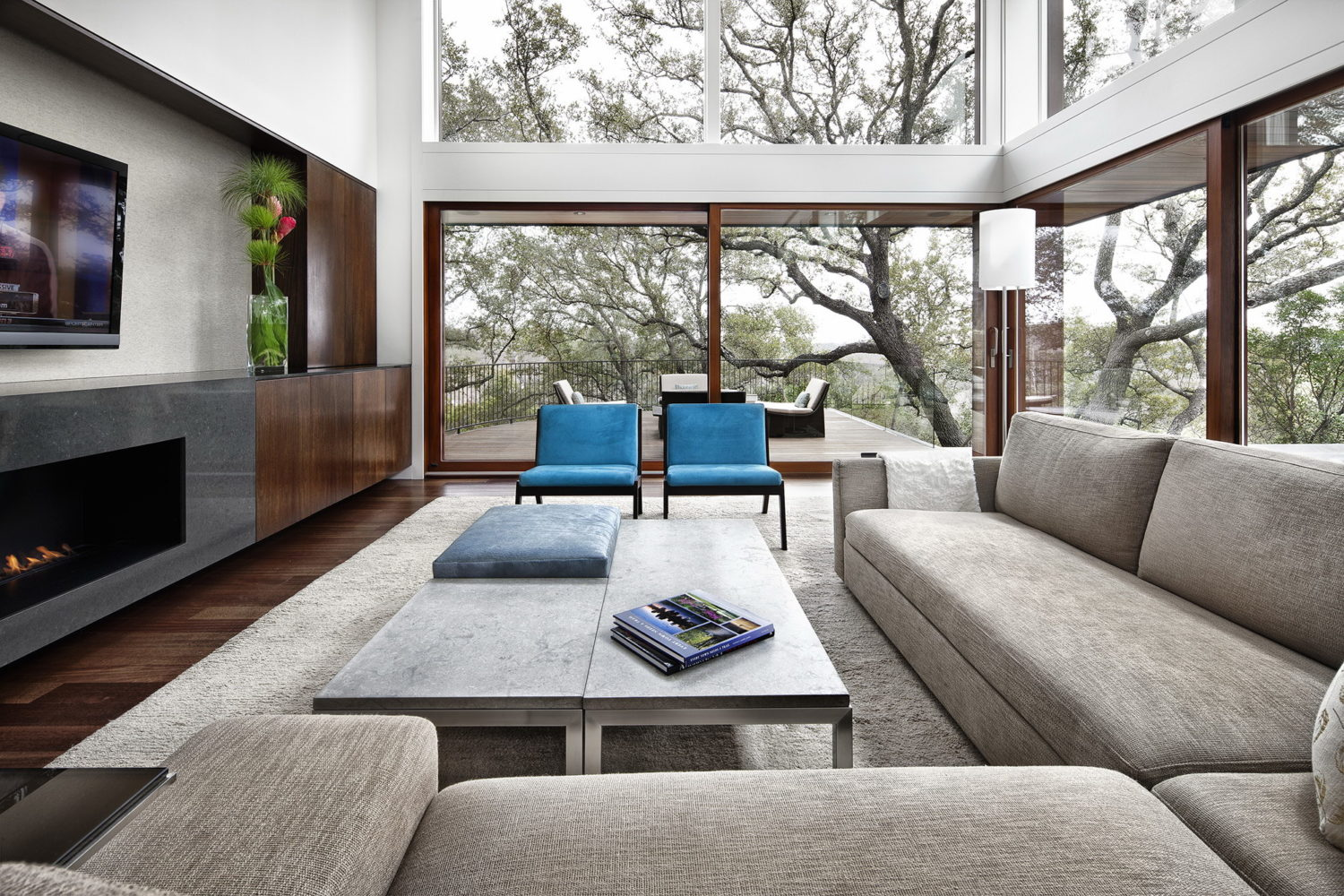 Tree House by Miró Rivera Architects