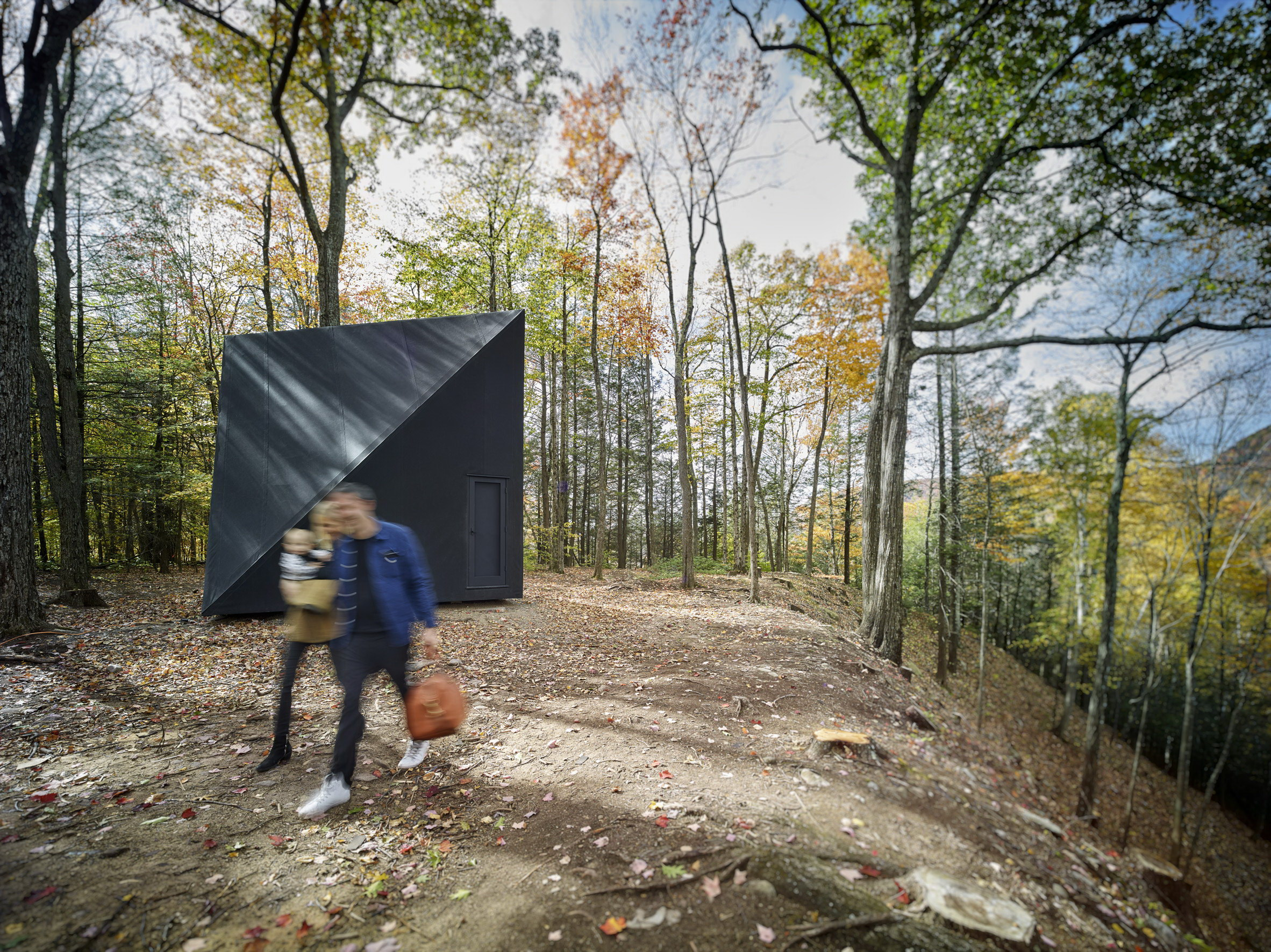 A45   Tiny Triangular Cabin in New York by BIG