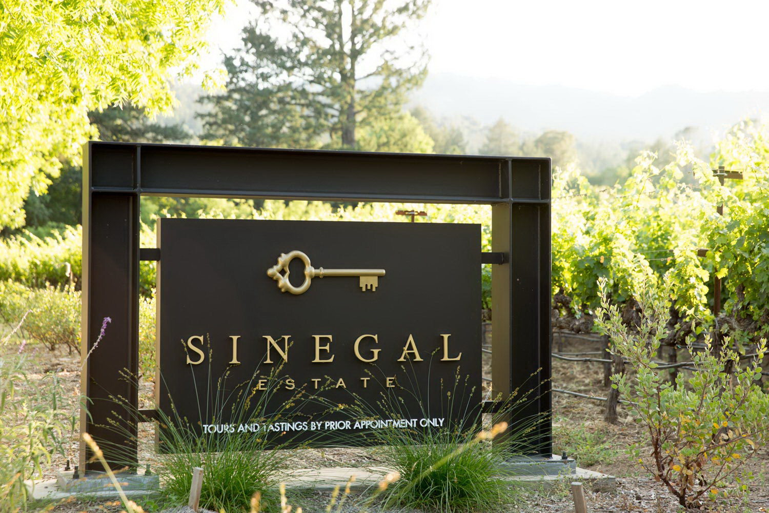 Sinegal Estate Winery by Signum Architecture