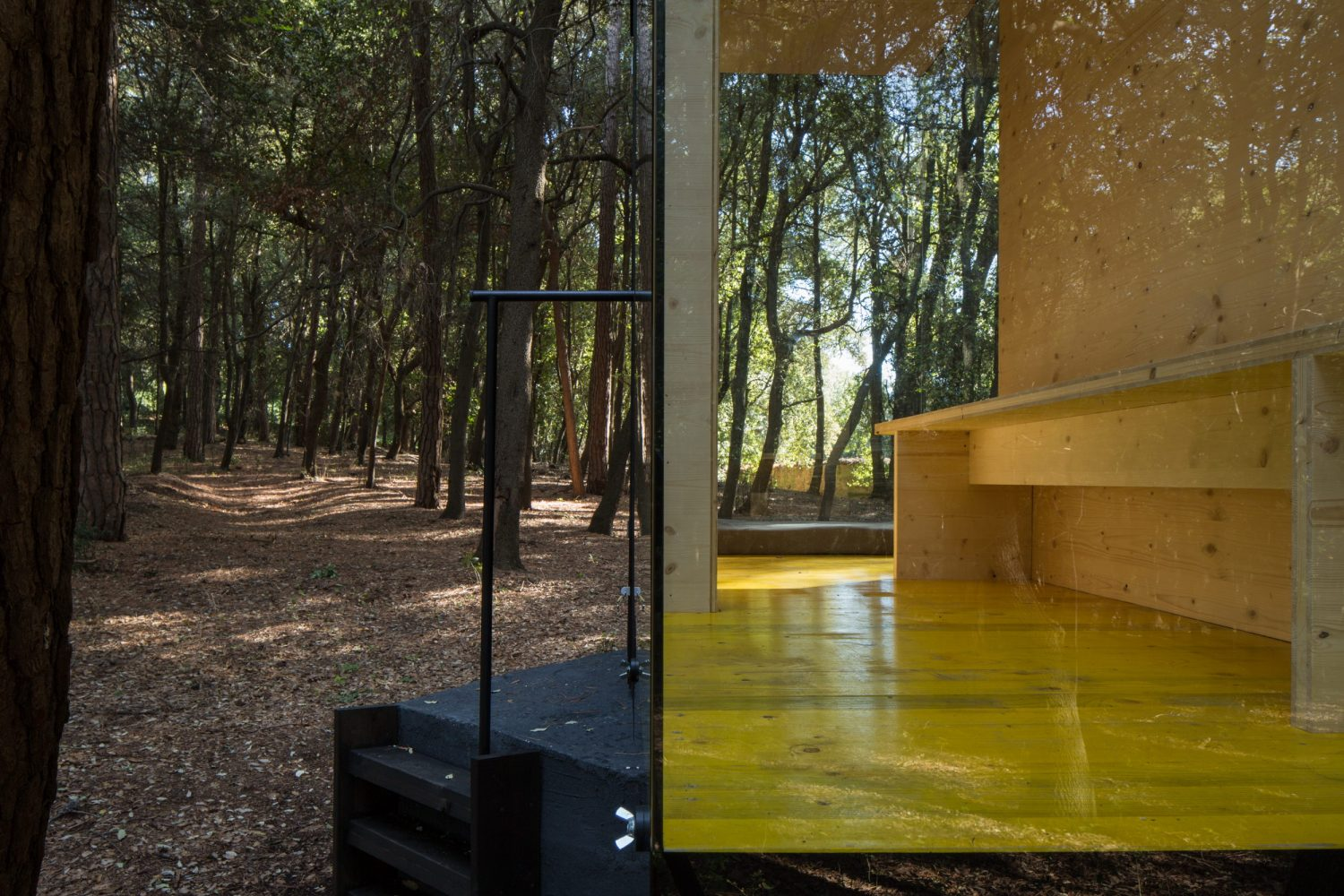 CBN – Cabin in the Wood by PLUS ULTRA studio