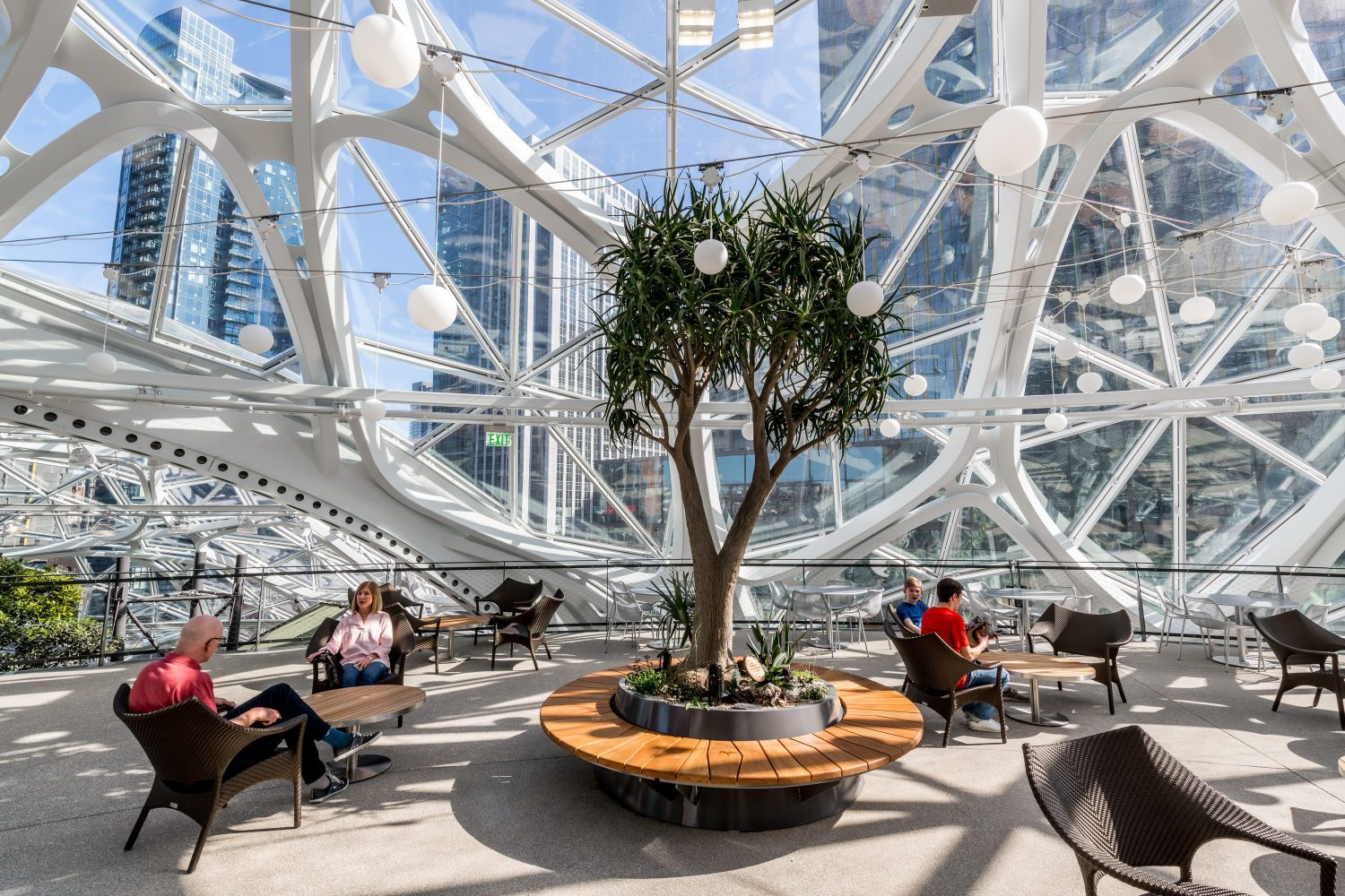 The Spheres in the New Amazon Headquarters