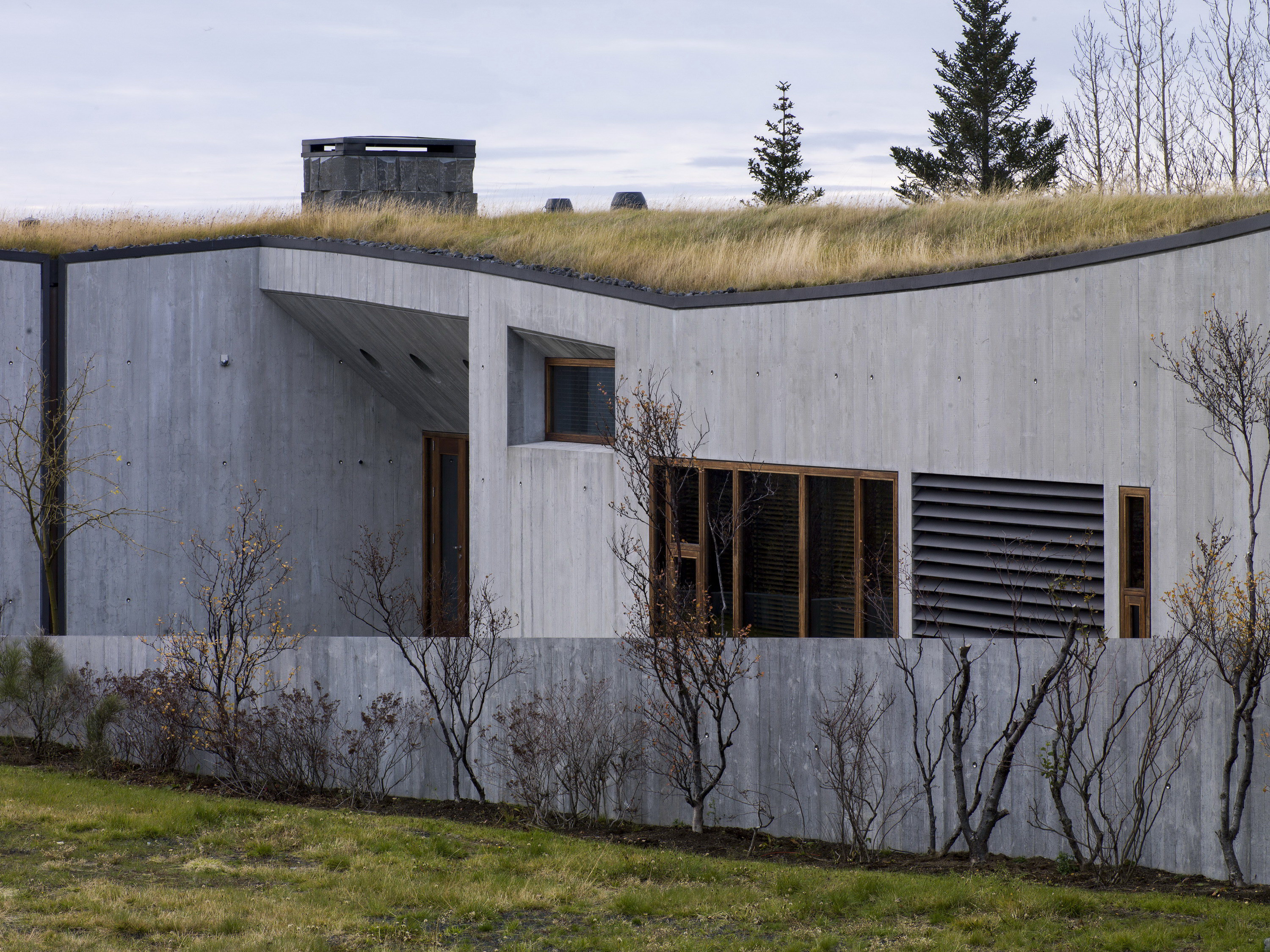 B14 – Icelandic Villa under a Series of Sharply Pitched Green Roofs