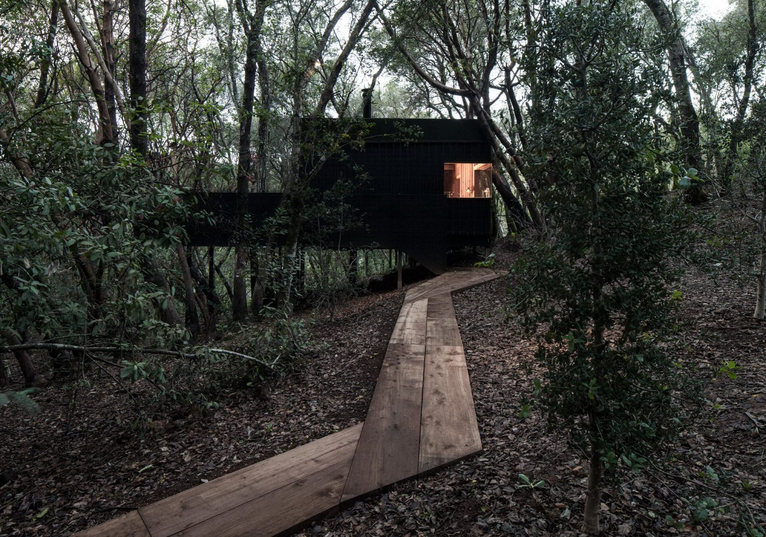 Forest House | Complex of Nine One-Room Cabins by Envelope A+D