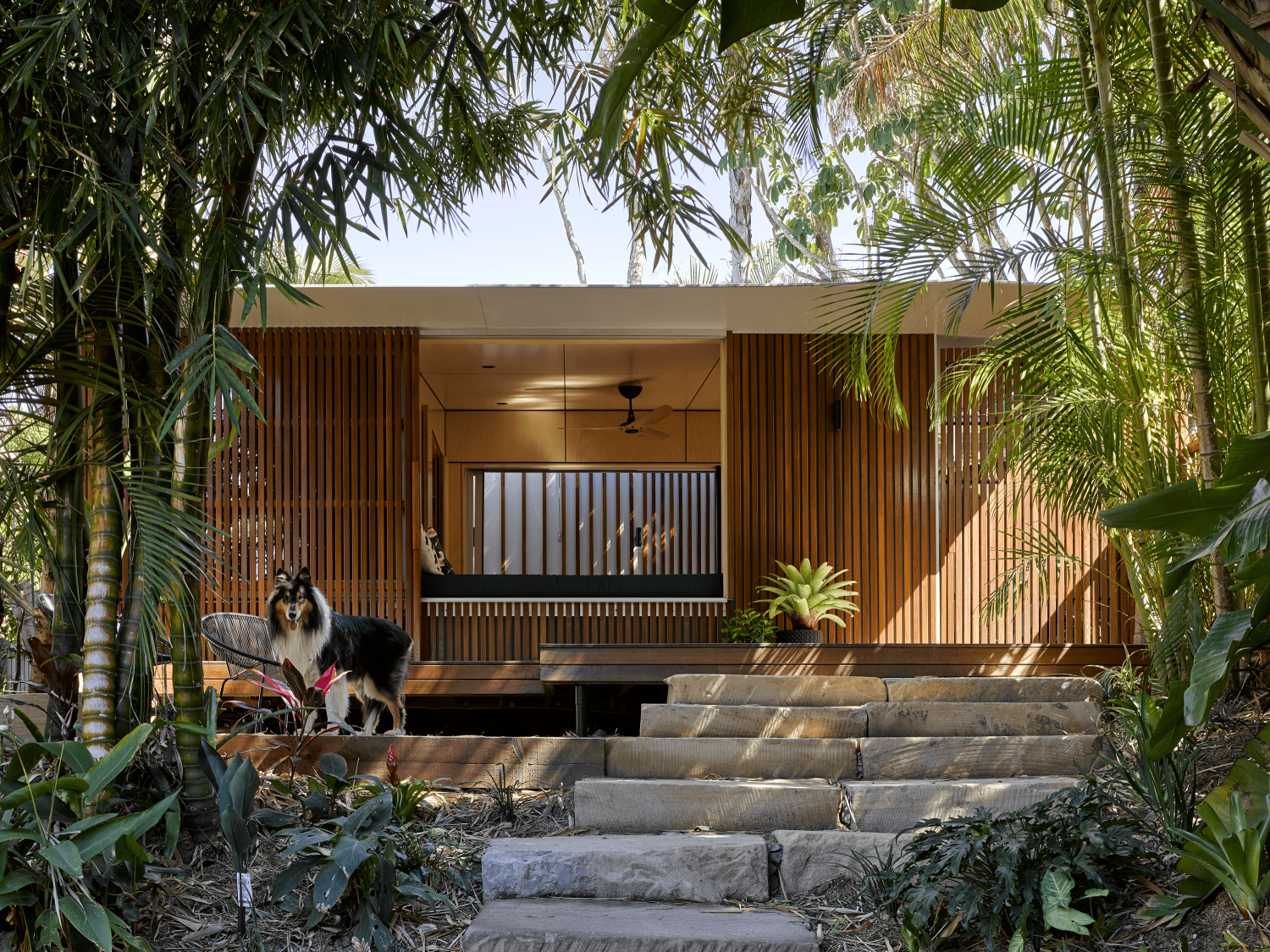 The Garden Bunkie | Tiny Backyard Studio by Reddog Architects
