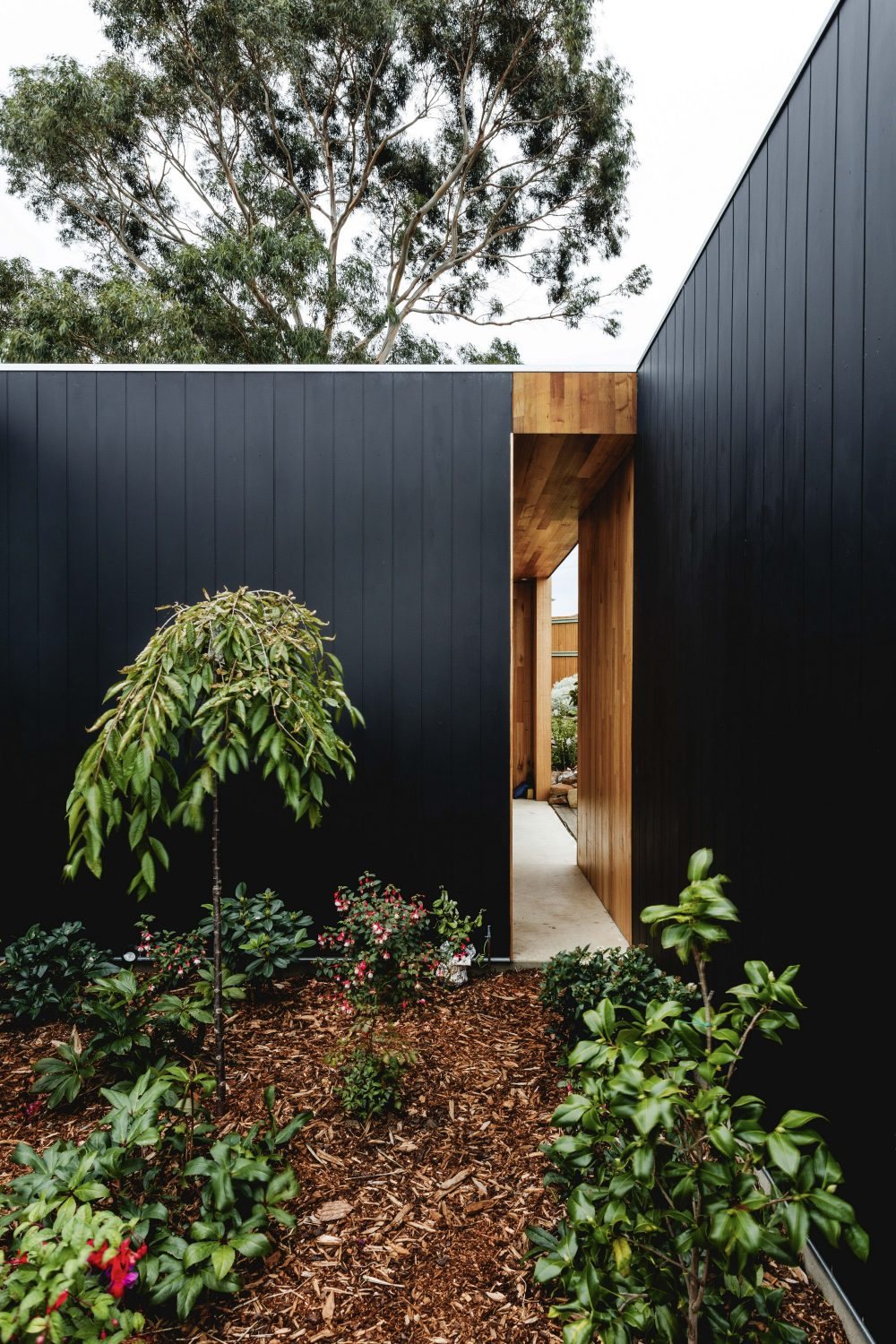 Five Yards House in Tasmania by Archier