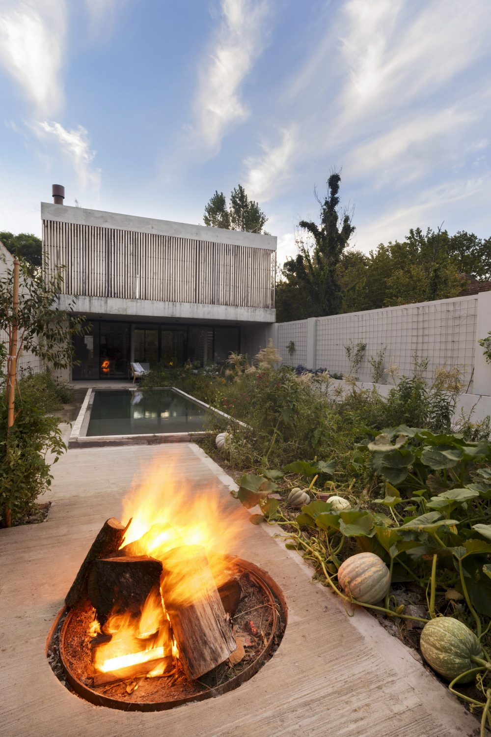 MeMo House by BAM! arquitectura