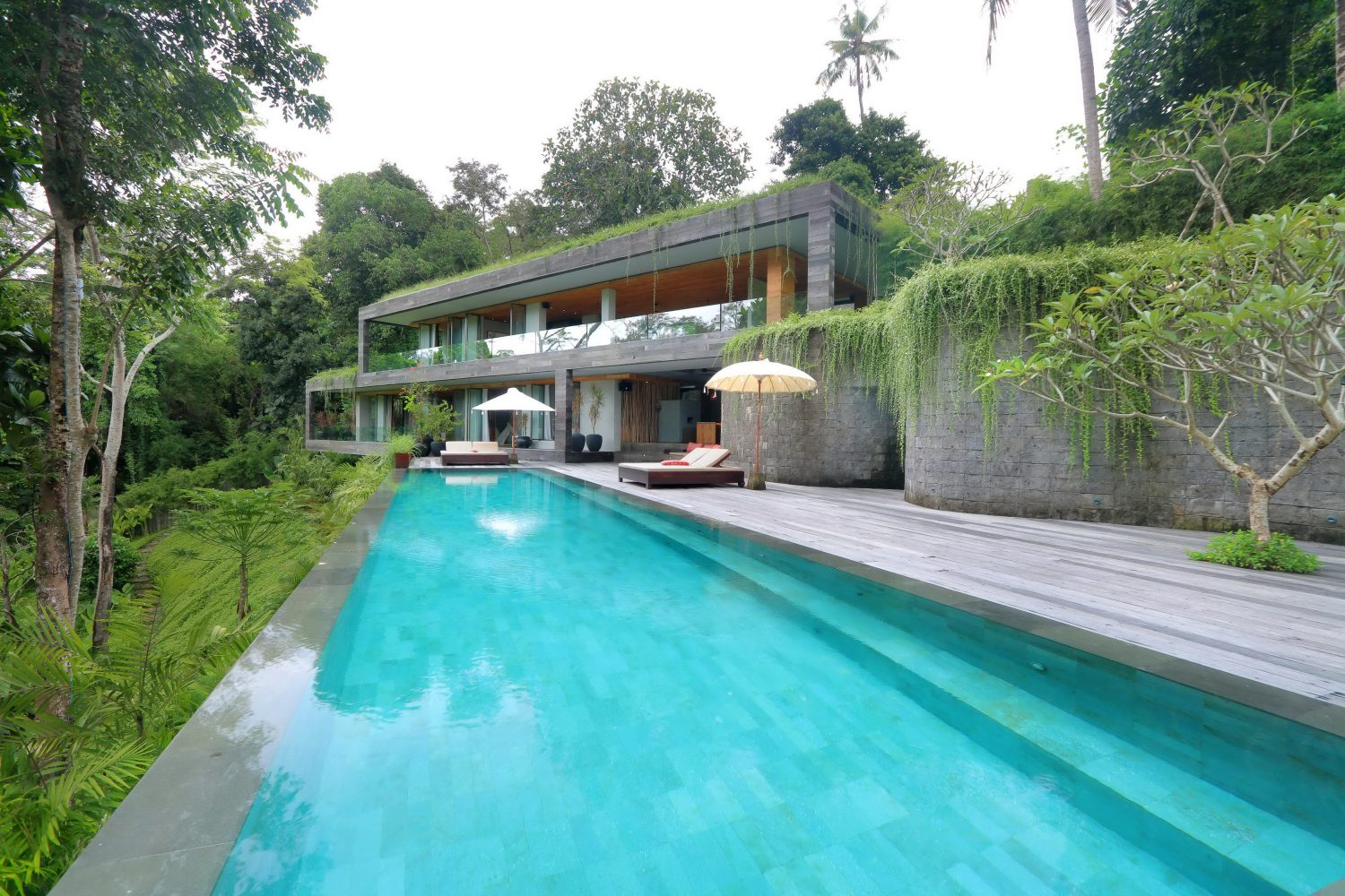 Chameleon Villa by Word of Mouth Architecture