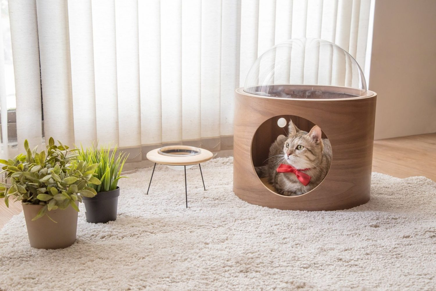 Spaceship-Inspired Cat Beds by Myzoo Studio