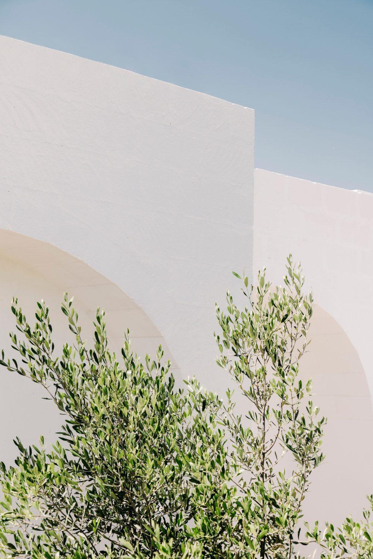 Masseria Moroseta by Andrew Trotter