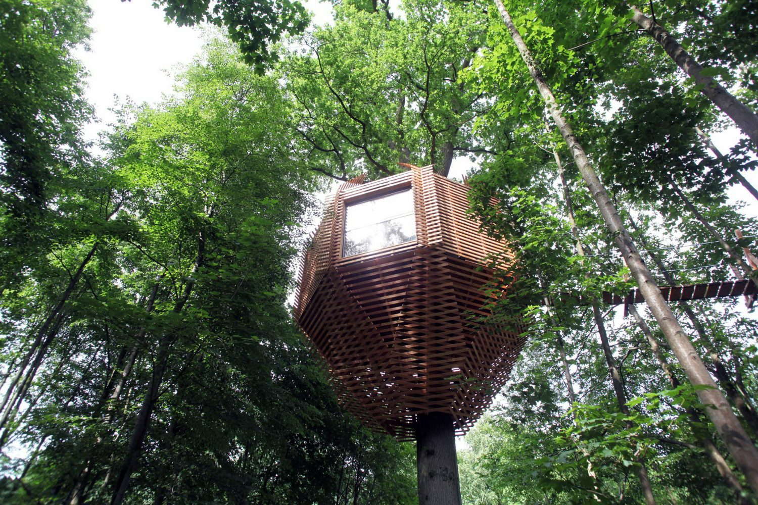 ORIGIN Tree House Hotel by Atelier LAVIT