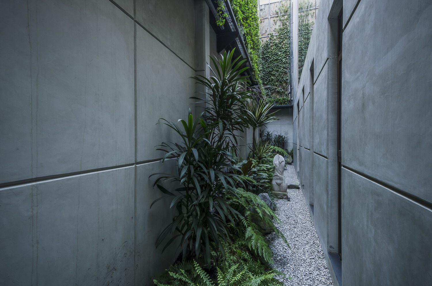 The Palm House   Modern House by Revolution