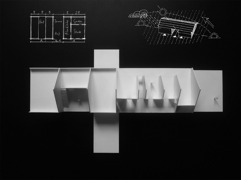 House by the Fens by Bernardo Bader Architekten