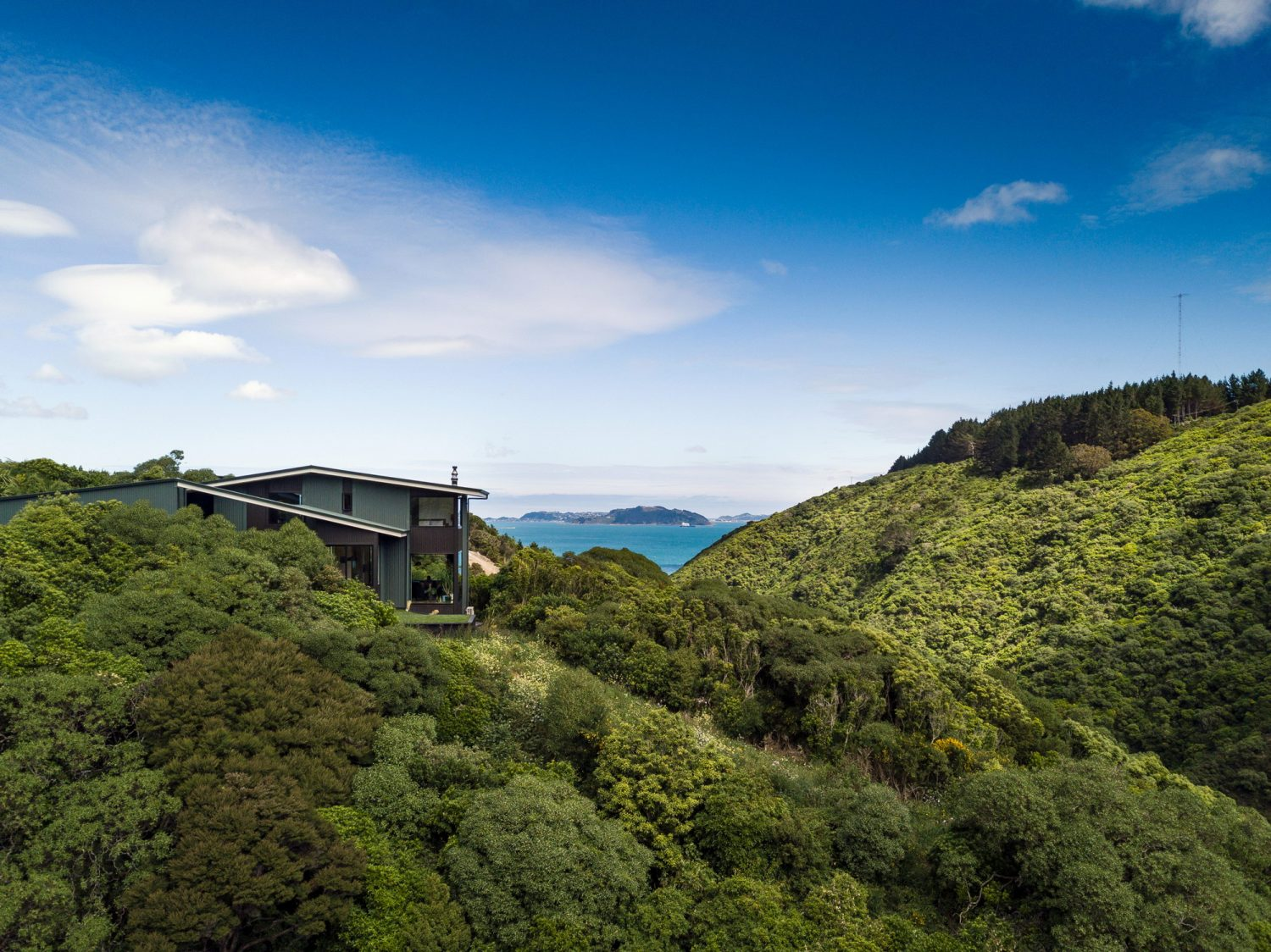 Korokoro Bush House by Parsonson Architects