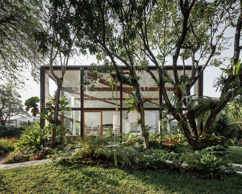Patom Organic Living by NITAPROW