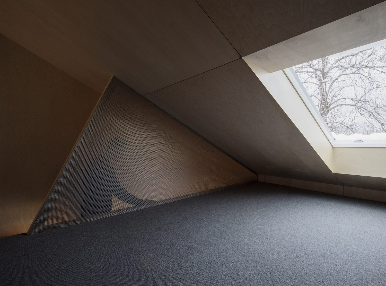 House of Many-Worlds by Austigard Architects