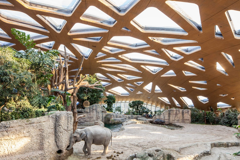 Elephant House Zoo Zürich by MSA