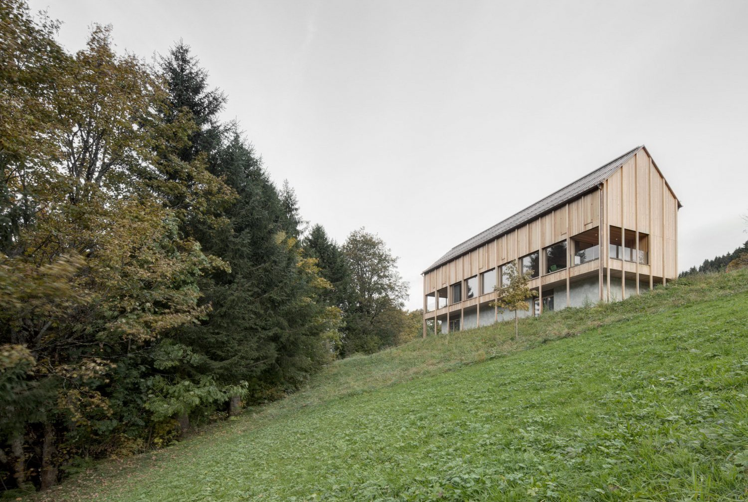 Haus am Stürcherwald by Bernardo Bader Architekten