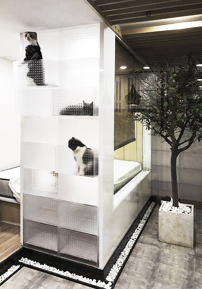 Cat House by FANAF