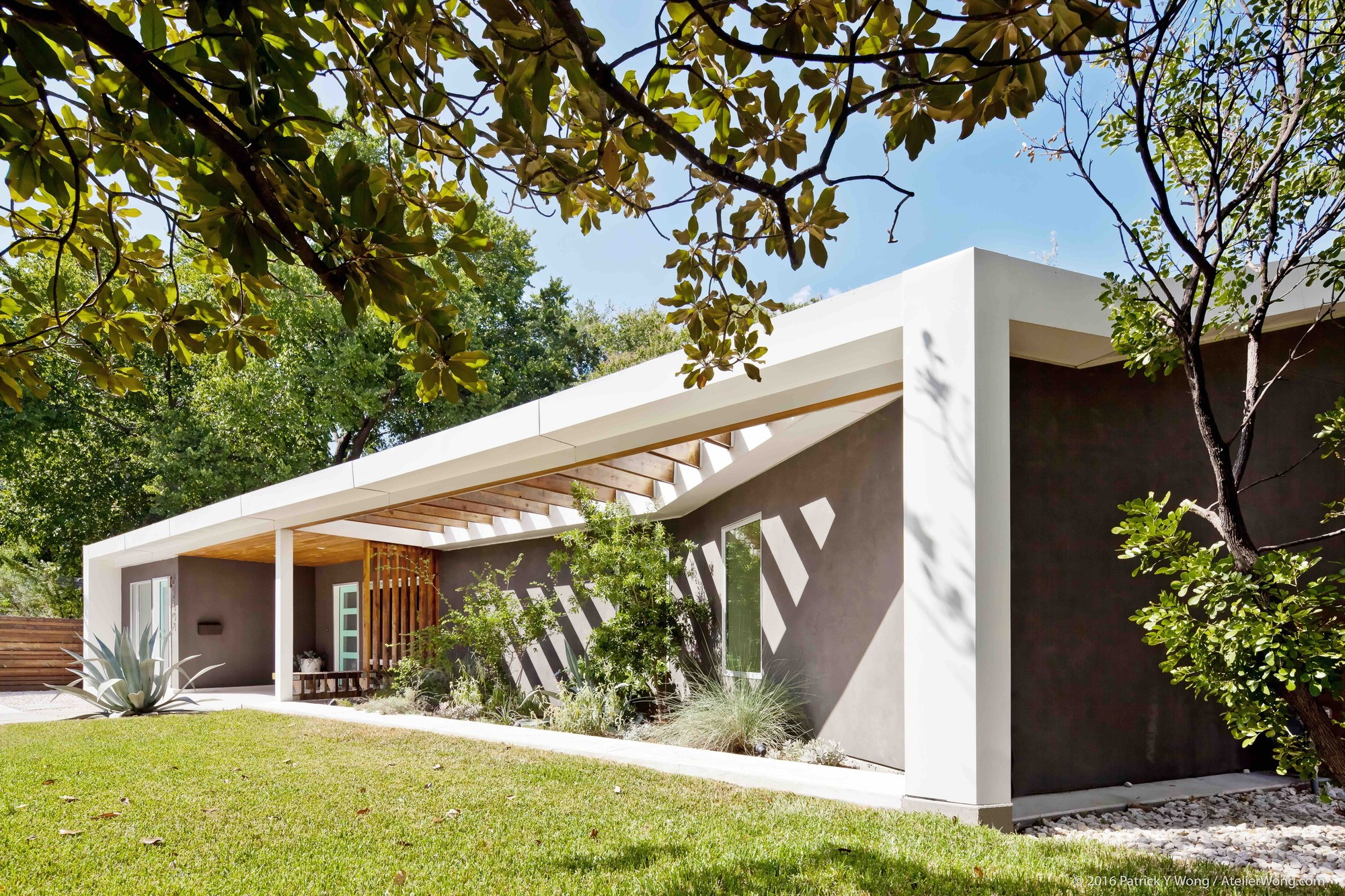 Y House by co(X)ist Studio