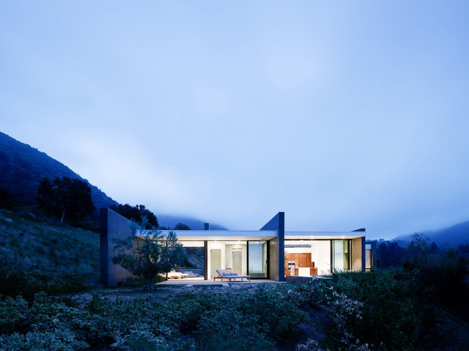 Wild Lilac House by Walker Workshop