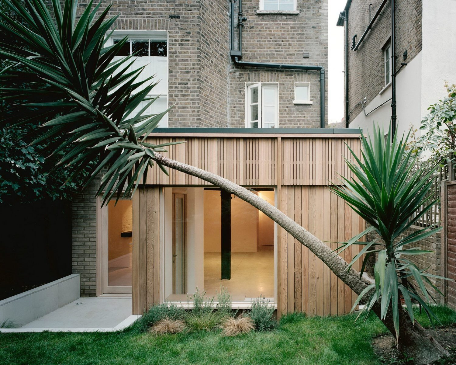 Leaning Yucca House by DF_DC