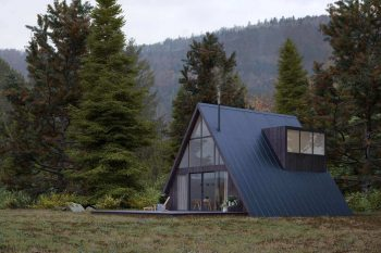A-Frame House by Den