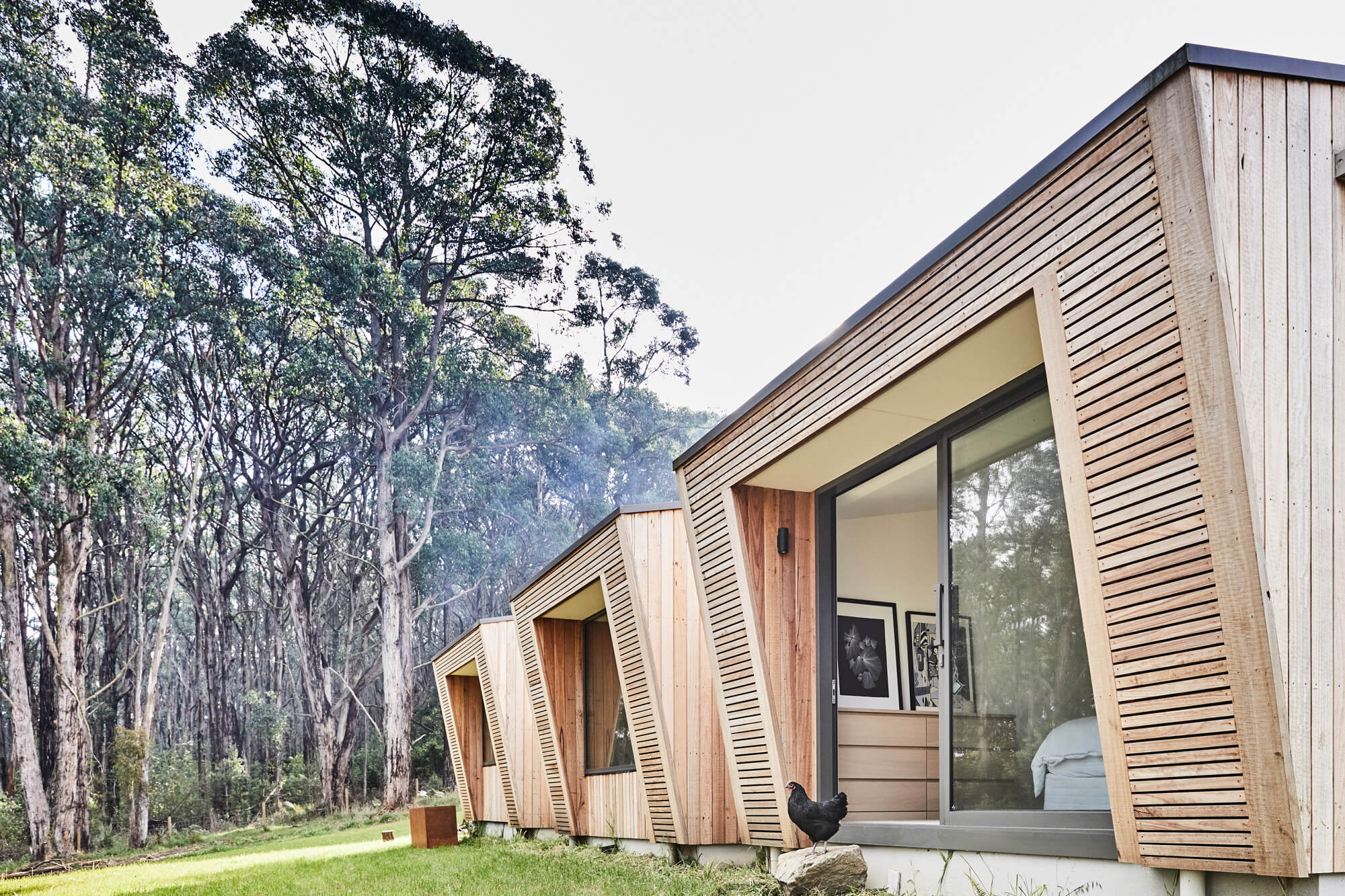 Red Hill House by InForm